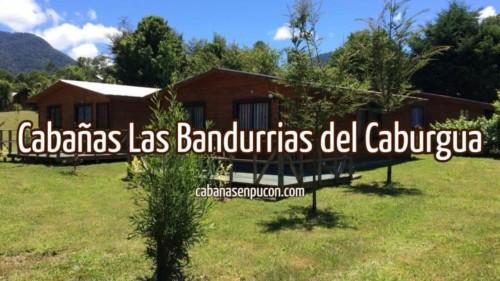 Cabañas Las Bandurrias del Caburgua